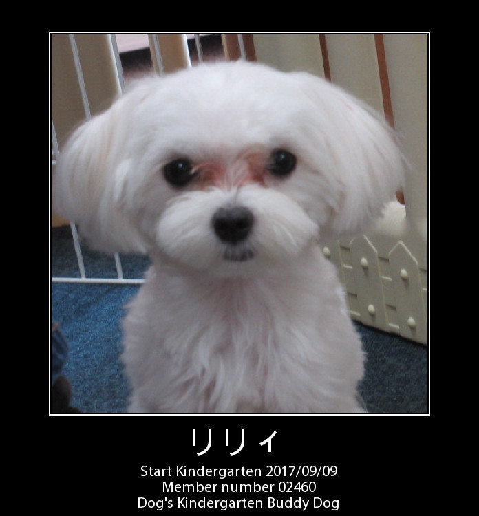 PhotoFunia-1504924939.jpg