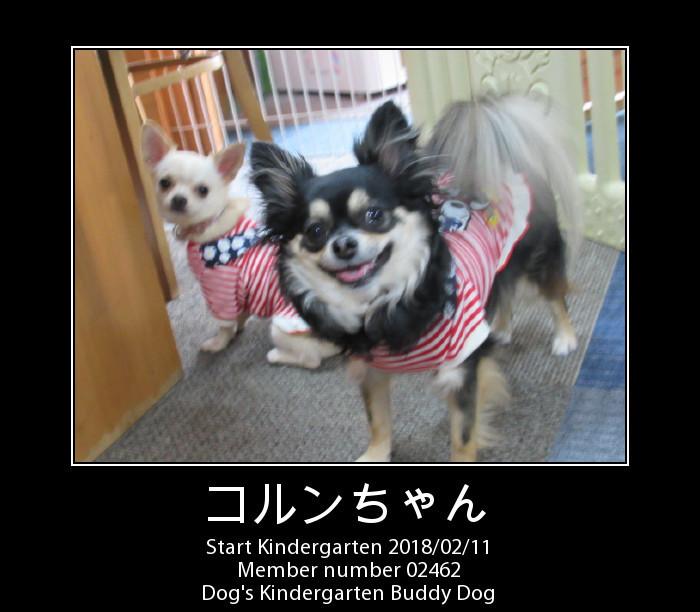 PhotoFunia-1518318070.jpg