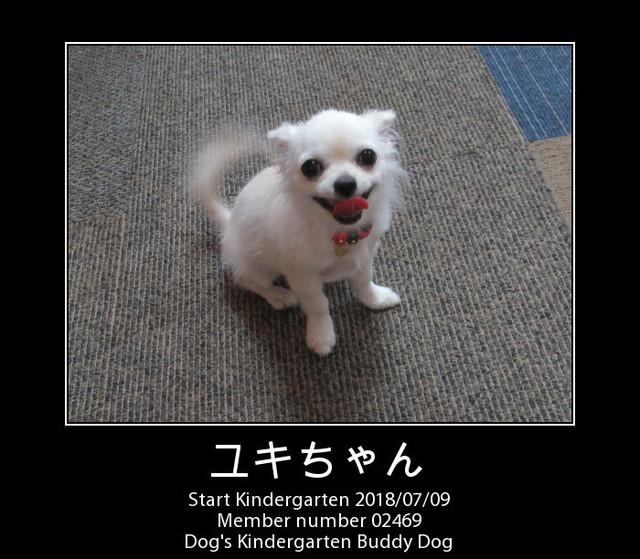 PhotoFunia-1531105636.jpg