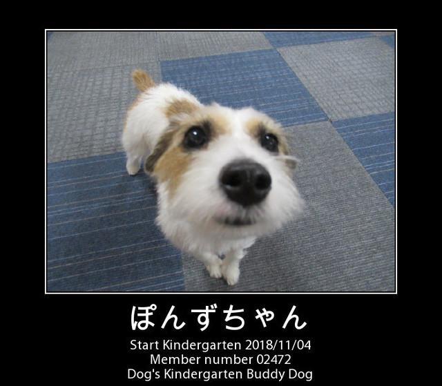 PhotoFunia-1541315851.jpg