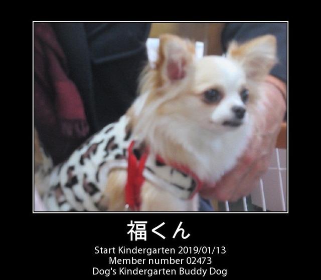 PhotoFunia-1547360044.jpg