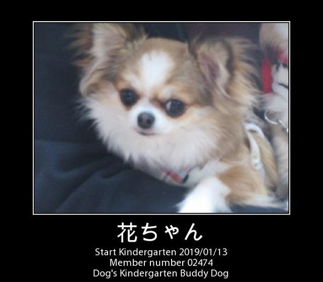 PhotoFunia-1547360181.jpg